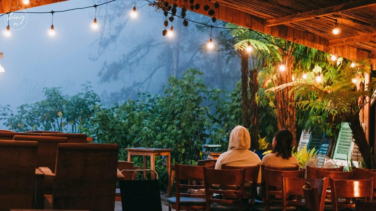 Trú cơn mưa chiều Đà Lạt trong những quán café ẩn mình bên vườn xanh, rừng thông thơ mộng